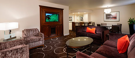 Junior Suite King Living Room